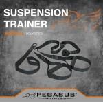 Pegasus Ιμάντες Ενδυνάμωσης Β 0999