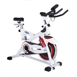 Viking Spin Bike V-2000
